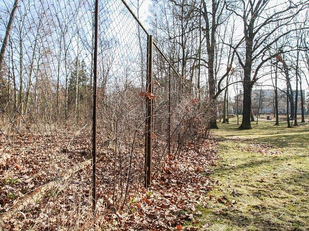 Spolek Pěstuj prostor a místní občané iniciovali proměnu Papírenského parku. Levá část snímku ukazuje zpustlou část, pravá veřejností využívanou.