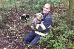 Hasiči zachránili u Třemošné psa