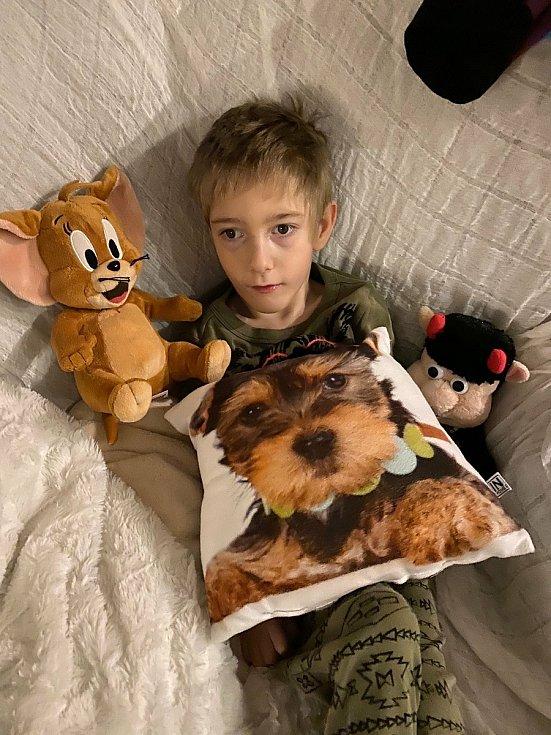 Sedmiletý Jonášek z Plzně trpí velmi vzácnou genetickou poruchou. Od utrpení mu pomáhají neurorehabilitace, bez nichž by ho trápily stále větší bolesti.
