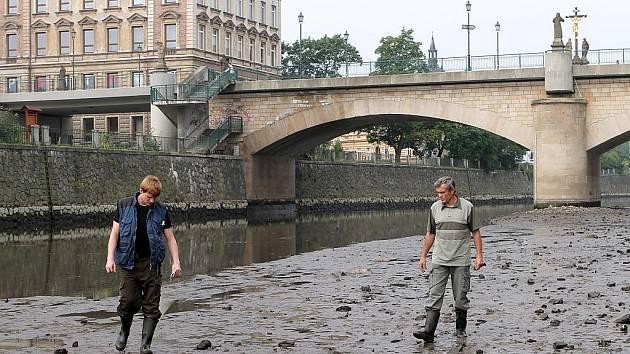 Rybáři zachraňovali vranky a mihule