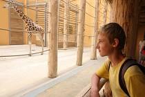 Otevření nových expozic v plzeňské zoo