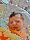 Vanesa Dammerová se narodila 23. února ve 20:16 mamince Drahoslavě a tatínkovi Václavovi z Drahkova u Blovic. Po příchodu na svět ve FN vážila sestřička Verunky a Matýska 3160 gramů a měřila 48 cm