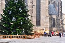 Na náměstí Republiky v Plzni před rozsvícením vánočního stromu.