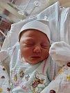 Nikola Konopová se narodila 27. března ve 13:36 mamince Lucii a tatínkovi Martinovi z Plzně. Po příchodu na svět v plzeňské FN vážila sestřička tříleté Michalky 3250 gramů a měřila 49 centimetrů.