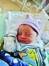David Roud se narodil 18. června v 15:59 mamince Hance a tatínkovi Romanovi z Nezvěstic. Po příchodu na svět v plzeňské FN vážil bráška Krištofa a Filipa 3090 gramů a měřil 48 centimetrů.