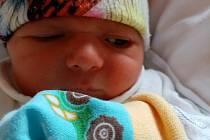 Marek Kočandrle z Plzně se narodil 13. dubna 2021 ve 20:57 hodin mamince Haně a tatínkovi Petrovi. Po příchodu na svět v porodnici FN Lochotín vážil bráška Petra 2850 gramů a měřil 49 centimetrů.