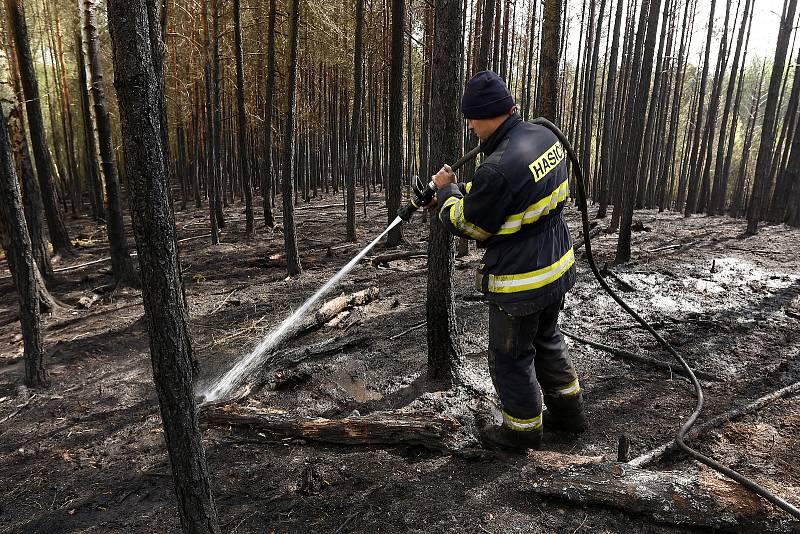 následky požár lesní porost Krkavec dohašování HZS hasiči