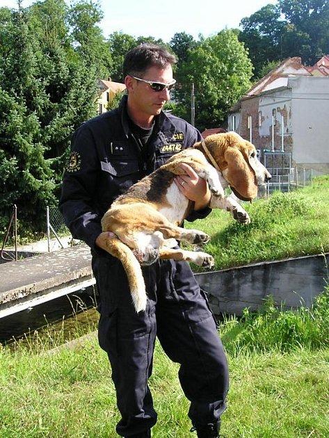Jeden z policistů, který basetovi pomáhal.
