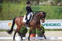 Tereza Čechurová se s koněm Elfen Prinz kvalifikovala ME v drezuře