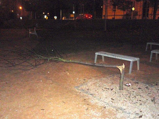 Výsledek řádění mladého vandala v parku na Habrmannově náměstí na Doubravce
