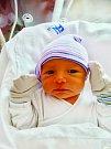 Alan Fryček se narodil 23. listopadu v 10:27 mamince Aleně a tatínkovi Martinovi z Plzně. Po příchodu na svět v plzeňské FN vážil bráška Jolanky 3400 gramů a měřil 49 centimetrů.