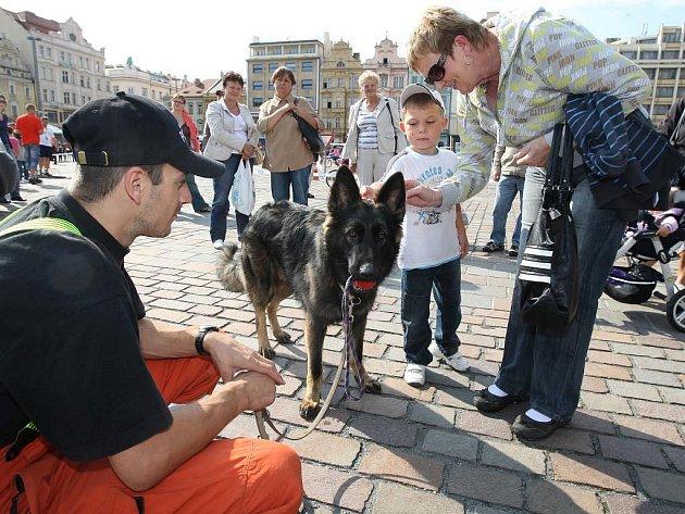 Den s městskou policí na náměstí Republiky v Plzni