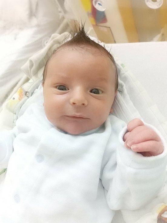 František Pojar z Nemilkova se narodil v klatovské porodnici 11. ledna v 6:14 hodin. Při příchodu na svět vážil 3160 g a měřil 47 cm. Tatínek František byl mamince Kláře u porodu velkou oporou. Na miminko se doma těšili bráškové Jan a Kryštof.