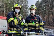 Vystrašenou kočku zachránili policisté, pomohli i přivolaní hasiči s plošinou
