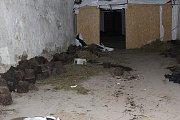 Likvidace obří pěstírny marihuany v Dobřanech u Plzně