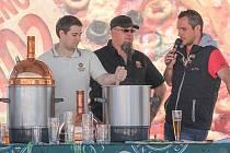 Pivní fest v Plzni