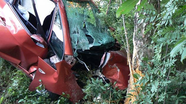 Zatím poslední letošní tragická nehoda se stala v pondělí 17. července uVelkého Boru na Klatovsku. Zemřela 76letá žena.