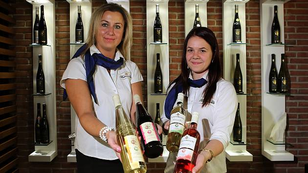 Ve vinotéce Bohemia Sekt Centra ve Starém Plzenci se otevře v neděli 11. 11. v 11 hodin a 11 minut Svatomartinské víno.
