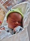 Jan Baxa se narodil 1. srpna ve 2:46 mamince Marcele a tatínkovi Zdeňkovi z Dobřan. Po příchodu na svět ve FN vážil bráška šestileté Stely a tříletého Bártíka 3890 gramů a měřil 52 centimetrů