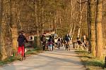 Návštěvu boleveckých rybníků si o víkendu nenechalo ujít, i přes doporučení zůstávat doma, mnoho lidí.
