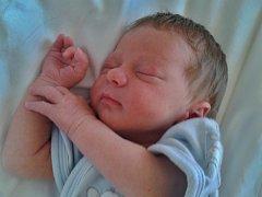 Petr Metlička se narodil 20. června v 18:30 mamince Lucii a tatínkovi Petrovi z Kyšic. Na svět přišel v porodnici U Mulačů s váhou 2850 gramů a mírou 48 centimetrů