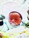 Josef Kondelík se narodil 10. listopadu v 15:24 mamince Kateřině a tatínkovi Josefovi z Trojan. Po příchodu na svět v plzeňské FN vážil bráška tříleté Miládky 3080 gramů a měřil 50 centimetrů.