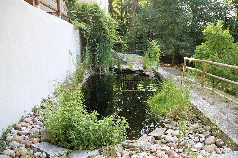 Vodní zahrada pod hrází Velkého Boleveckého rybníka.