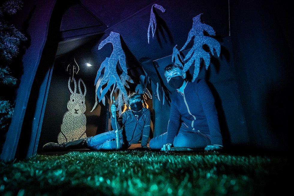 Areál DEPO2015 v Plzni se tento týden po dlouhé době opět otevírá a od úterý 11. května tak může přivítat své návštěvníky na nové, dlouho připravované a rozsáhlé interaktivní výstavě BLIK BLIK Tajuplný les.