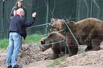 Medvěd Pišta oslavil v úterý třicáté narozeniny. Jako dárek dostal piškotový dort