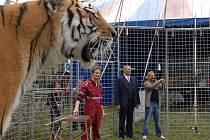 Pavel Rödl (uprostřed) vstoupil do klece s tygry.