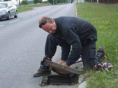 Záchrana kachňat, která v Univerzitní ulici v Plzni na Borech spadla do kanálu