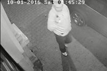 Zloděje zachytil kamerový systém.