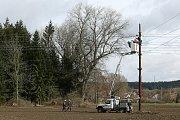 Technici ČEZu opavují poškozené vedení vysokého napětí nedaleko Křimic. Vedení poničil pád stromu způsobený poryvem silného vichru.