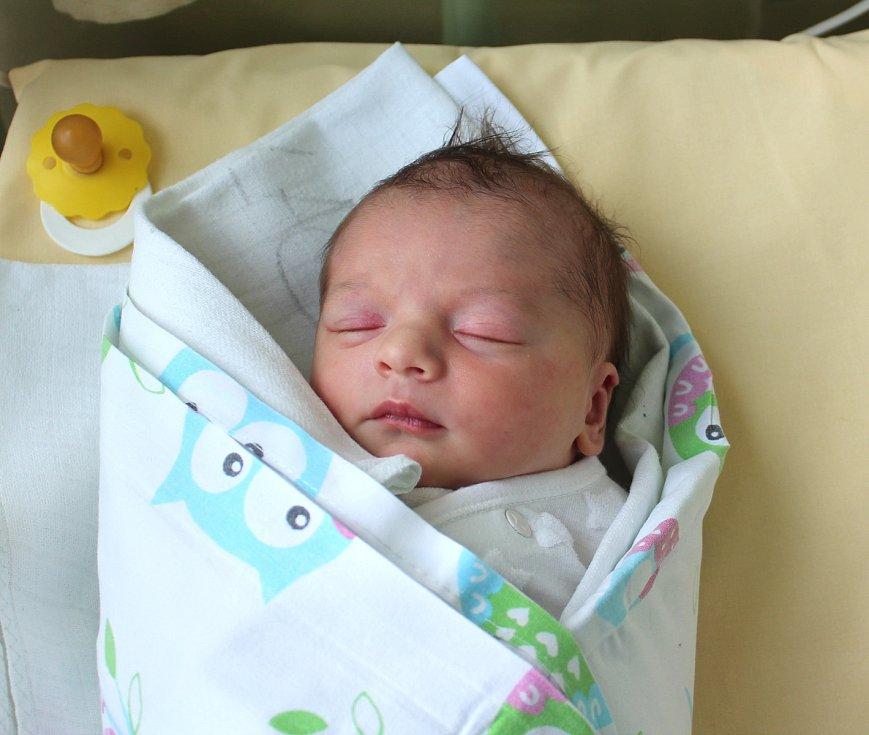 Ema Vitnerová se narodila 13. ledna v 15:39 mamince Martině a tatínkovi Tomášovi z Plzně. Po příchodu na svět v plzeňské nemocnici U Mulačů vážila jejich prvorozená holčička 2990 gramů.