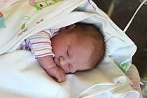 Rozálie Forejtová se narodila v porodnici U Mulačů 25. srpna ve 2:35 hodin (3120 g). Rodiče Lucie a Jan z Plzně věděli, že jejich druhorozené miminko bude zase holčička. Doma již mají skoro dvouletou Elišku.