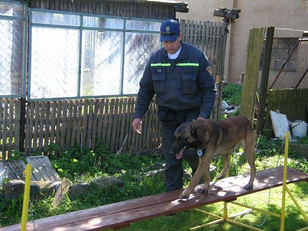 Jiří Šamonil s belgickým ovčákem Kimem