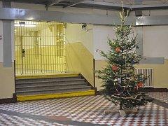 Vánoce ve věznici na Borech