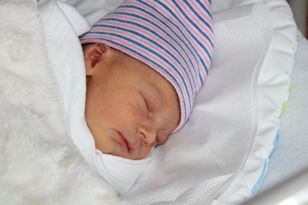Hynek Nocar se narodil 30. listopadu v 9:59 mamince Věře a tatínkovi Lubošovi z Dolců. Po příchodu na svět v klatovské porodnici vážil bráška Viléma a Vesny 2680 gramů a měřil 49 cm.