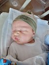 Patrik Hedvík se narodil 18. března ve 12:24 mamince Nikole a tatínkovi Radkovi zPlzně. Po příchodu na svět vplzeňské FN vážil bráška tříleté Vanessky 4110 gramů a měřil 52 centimetrů.
