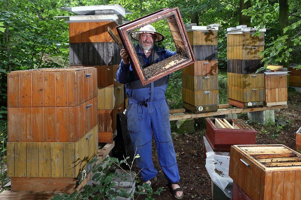 17 - Ke včelaření je potřeba mnoho materiálu. Ten zabírá spoustu místa jak na včelnici, tak ve skladu.
