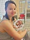 Alfréd Jehlička se narodil 3. června v1:11 mamince Kristýně a tatínkovi Janovi Ouřadovi. Po příchodu na svět vplzeňské Mulačově nemocnici vážil bráška Krištůfka 3500 gramů a měřil 51 centimetrů.