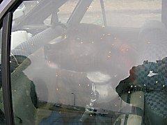 Pitbul zavřený v autě.