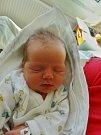 Štěpánka Kristlová se narodila 11. února v 5:40 mamince Radce a tatínkovi Miloslavovi z Radimovic. Po příchodu na svět v plzeňské porodnici U Mulačů vážila sestřička devatenáctiměsíčního Radka 3150 gramů a měřila 49 cm.