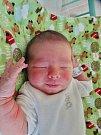 Petr Kolář se narodil 7. května v 5:30 mamince Olze a tatínkovi Petovi z Plzně. Po příchodu na svět v porodnici U Mulačů vážil jejich prvorozený synek 3600 gramů a měřil 51 centimetrů