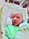 Michaela Hajnová se narodila 28. června v 9:43 mamince Marcele a tatínkovi Tomášovi z Plzně. Po příchodu na svět v plzeňské FN vážila sestřička čtyřleté Verči 2800 gramů a měřila 47 centimetrů.
