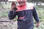 Filip Krásl z Plzně s jedním z hřibů, které našli s otcem o víkendu v lese poblíž Úterý na severním Plzeňsku.