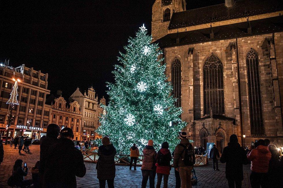 Vánoční strom na náměstí Republiky v Plzni.