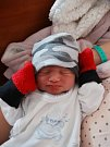 Robin Hlad se narodil 26. prosince v10:07 mamince Ivetě a tatínkovi Radkovi zPlzně. Po příchodu na svět vplzeňské FN vážil bráška dvouleté Sandry 3420 gramů a měřil 50 cm.