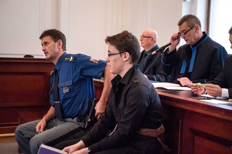 Mladík souzený v Plzni za vraždu osmnáctileté dívky ze Zdemyslic.
