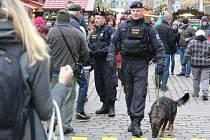 Policejní psovod na vánočních trzích na náměstí Republiky v Plzni